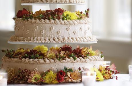 Alzate torta